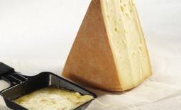 拉克莱特板烧奶酪