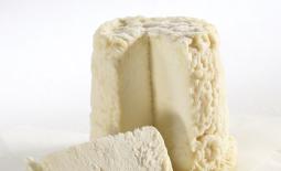 普瓦图夏匹胥山羊奶酪