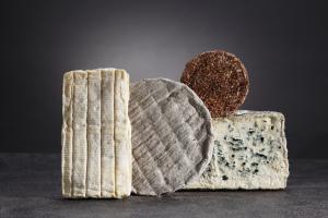 Brique du Forez, cendré de Champagne, délice de Pommard et bleu de Laqueuillle
