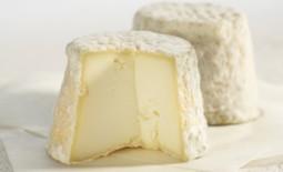 马孔奶酪(Mâconnais)
