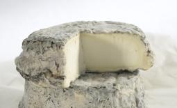 歇尔河塞勒山羊奶酪