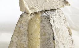 瓦朗塞山羊奶酪
